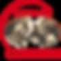 Logo Alpage Corbyre
