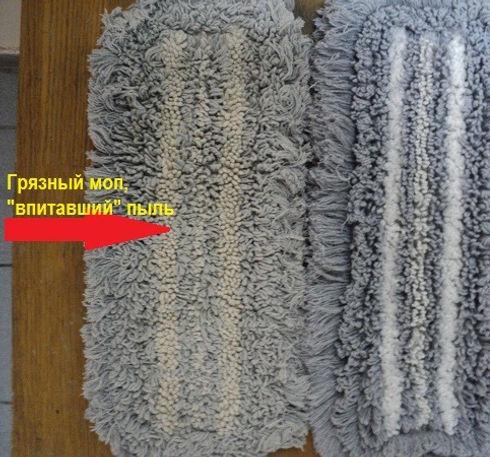 mopy_posle_obespylivanija_3_600_edited.jpg