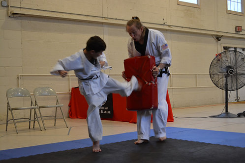 House Call Karate - Multi Family Pass