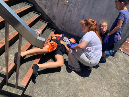 1st Island Guides learn 1st Aid