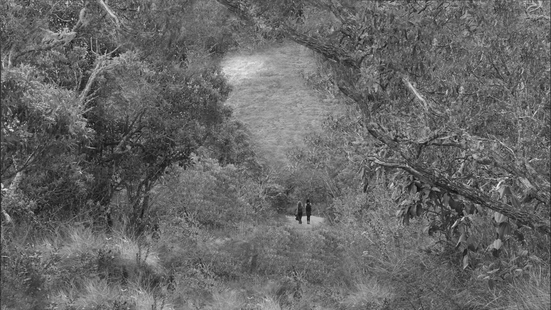 ibitipoca-hiking-.jpg