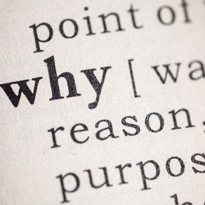 """""""Why""""? How I Learned to Love This Question More Than """"Why Not""""?"""