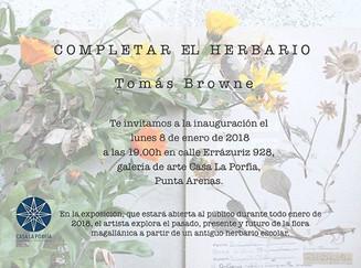 Completar el Herbario / Enero 2018