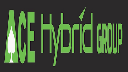 Ace Hybrid Group Logo
