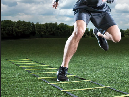 The Purpose Behind Agility Class