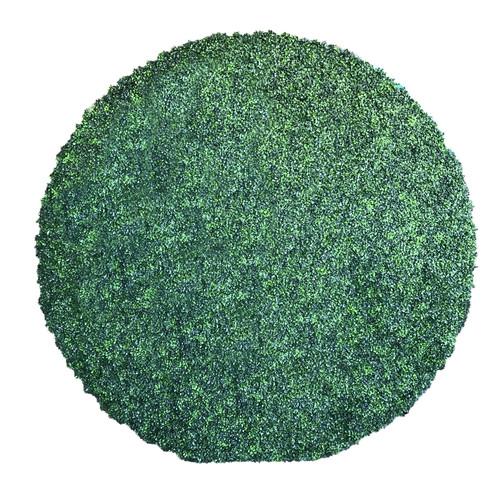 GRASS (8x8) circle.JPG