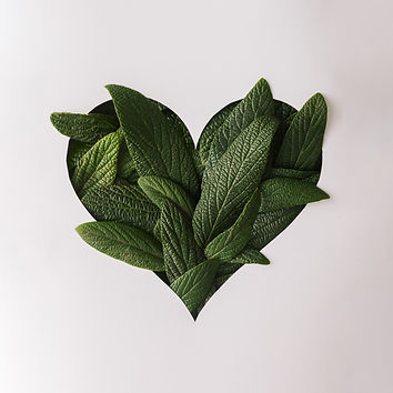 Heart shape cutout with green leaves. Lo