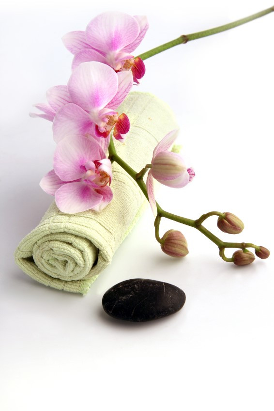 The Silk Root - Relax.jpg