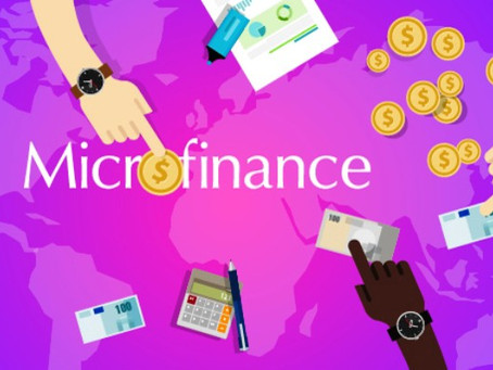 What Drives Turkey to Microfinance