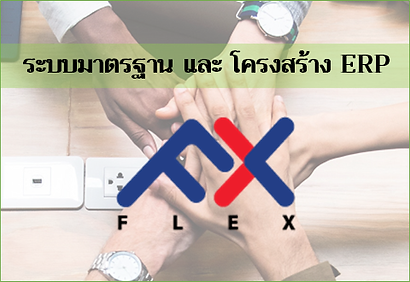 FLEX-banner_480_TH.png