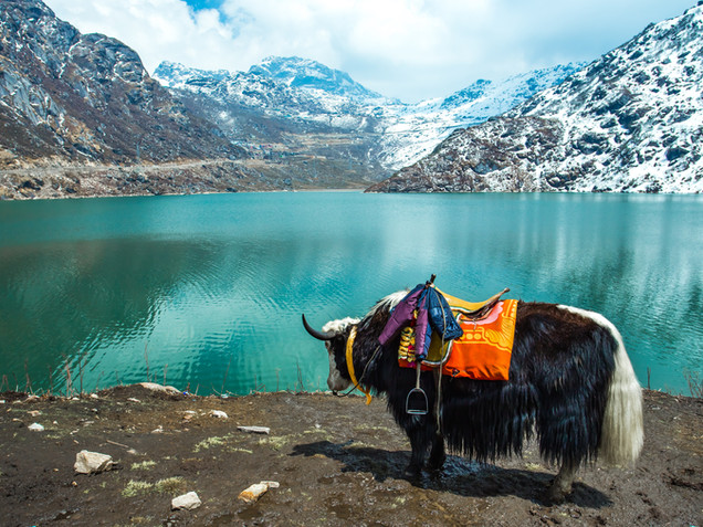 Tsangmo Lake in Sikkim, India..jpg