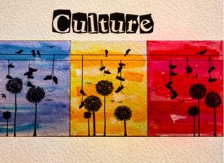 YS-Perignon' - Culture