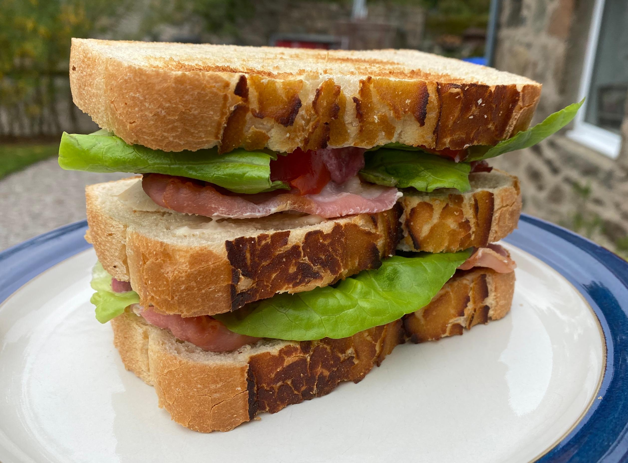 Classic Turkey & Bacon Club Sandwich