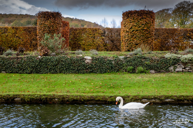 Les jardins d'Annevoie