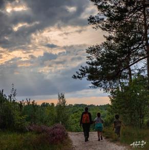 Mechelse Heide-91.jpg