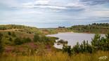 Mechelse Heide-84.jpg