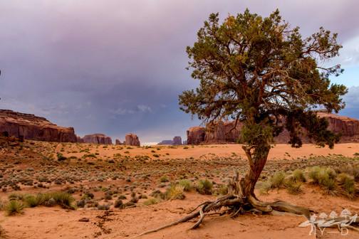 Monument Valley, Arizona, Etats-Unis