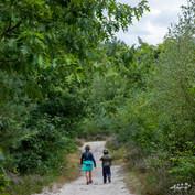 Mechelse Heide.jpg