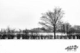 Chassepierre, Paysage minimaliste, photographie de paysage, Belgique, Wallophoto, Yannick Dubois