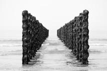 Cap gris nez, Wallophoto, Juillet 2021