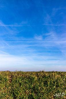 Mélin, Paysage minimaliste, photographie de paysage, Belgique, Wallophoto, Yannick Dubois