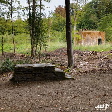 Bunker d'Hitler, Bruly-de-Pesche, Wallophoto, août 2020