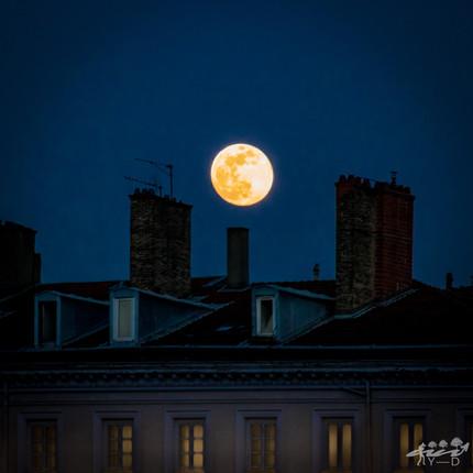 Lune lyonnaise, Lyon, Wallophoto