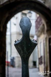 Coimbra, Wallophoto 2018