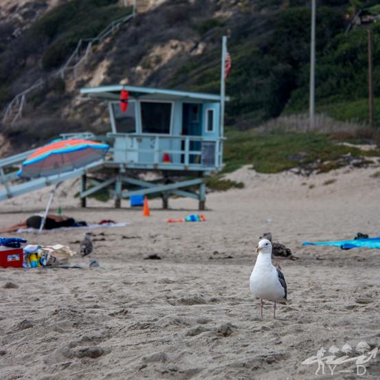 Malibu, Californie