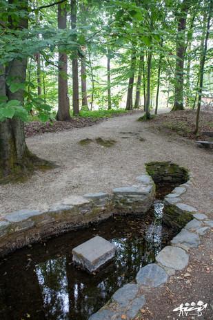 Le bassin, Bruly-de-Pesche, Wallophoto, août 2020