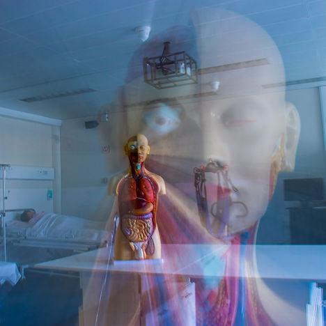 buste anatomique, ISSG, Haute Ecole Galilée, mannequin anatomique, concours photo galileo