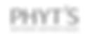 phyt's logo type.png