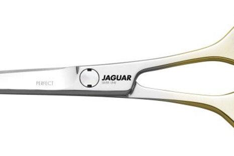Jaguar Silver Line