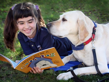 Dogs, Kids & Learning: A Comparative Exploration