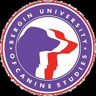 bergin u. logo.png
