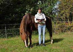 Jessica Hock Tierarzt, Chiropraktik