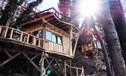 treehouse-small.jpg