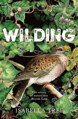 Wilding by Isabella Tree