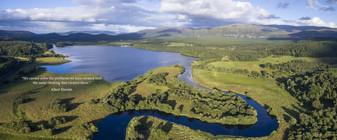 Scotland Rewilding