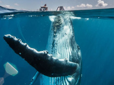 travel-photo-contest-national-geographic