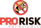 PRO RISK - Logo.png