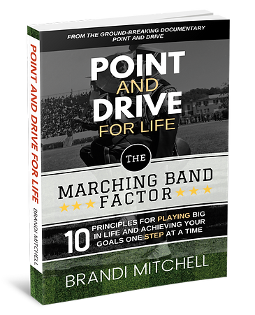 Point-and-Drive-Cover-3d.png