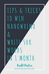win nanowrimo.png