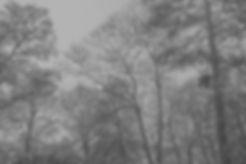 memoire_docu_NB-3.jpg