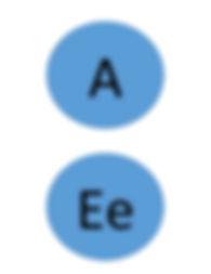 5 Vowels charts.jpg