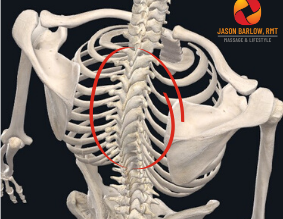 Got Mid-Back Pain? Do this #1 Move