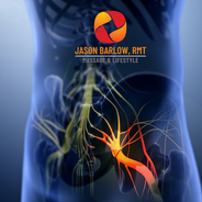 Hip - Sciatic Nerve 1.png