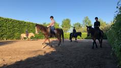 Roosenheuvel • Enjoy • JeZelf zijn • Paarden • Rijden • CenteredRiding • KinderFeestjes •  PonyPower voor Kids • PaardenKracht voor Pubbers • PrachtigKrachtigTraining Volwassenen • PaardenCoaching • EmotieCoaching • Lekker in je vel bij Roosenheuvel •