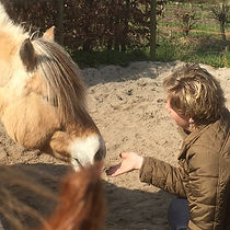 Roosenheuvel-PaardenCoaching-ind