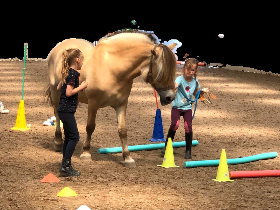 Roosenheuvel-PonyPowervoorKids